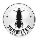 diagnostic termites Marseille